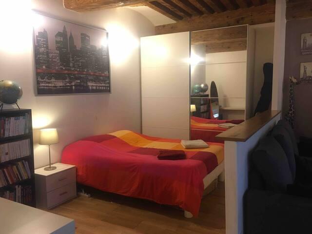 Joli appartement à la Croix-Rousse