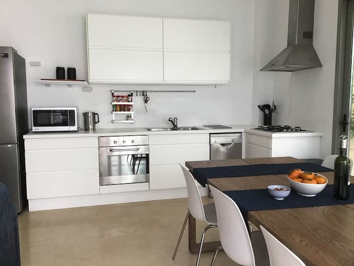 Furnished  Apartment  Luxury and Parking Frishman