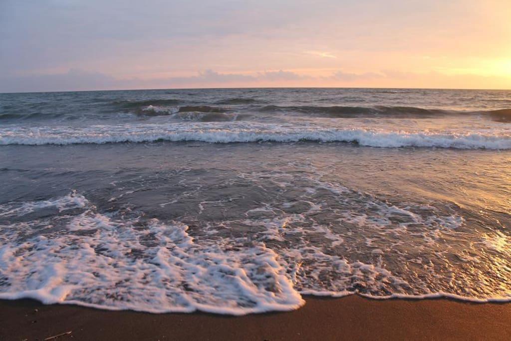 на берегу моря , пляж черные пески