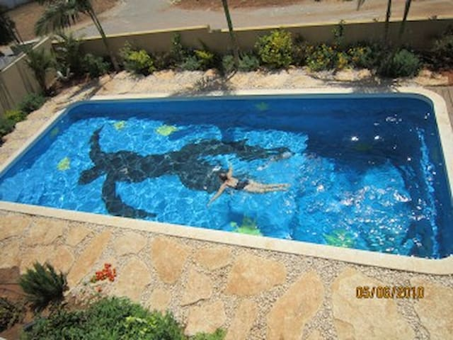 The pool is almost 40x17 feet. (12x5 meters) It's got a new green-turquoise coating!!