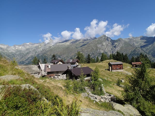 Mountain cabin, back to nature experience. - Ceppo Morelli - Cabane