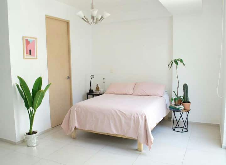 Lovely & perfect location Roma North next2 Condesa