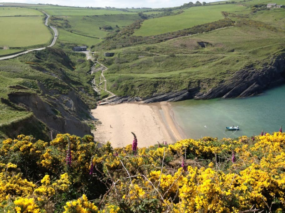 The beach from half up the Mwnt