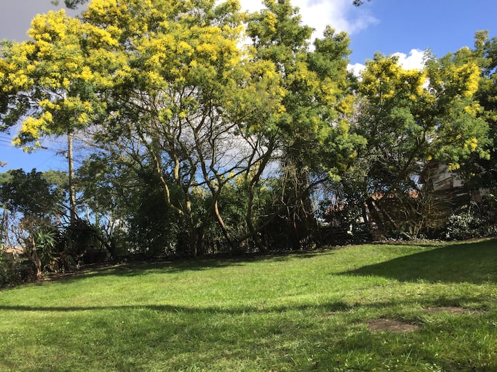 Villa Pyla Sur Mer