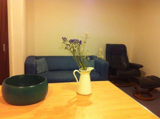 Cozy Apartment near Edinburgh Castle