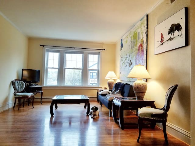 Amenities,Modern, Bright, Big 3BR condo WashU/Loop - University City - Flat
