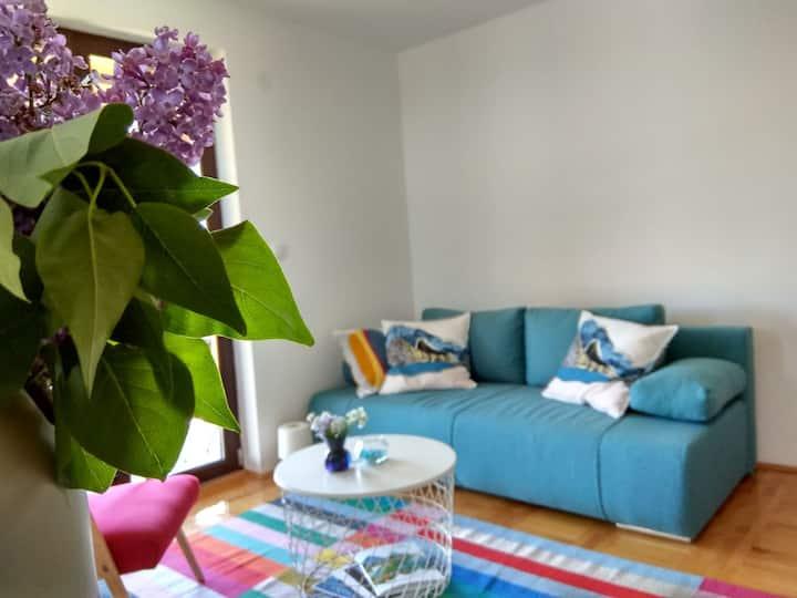 Modern & cosy apartment on mountain Tara 2