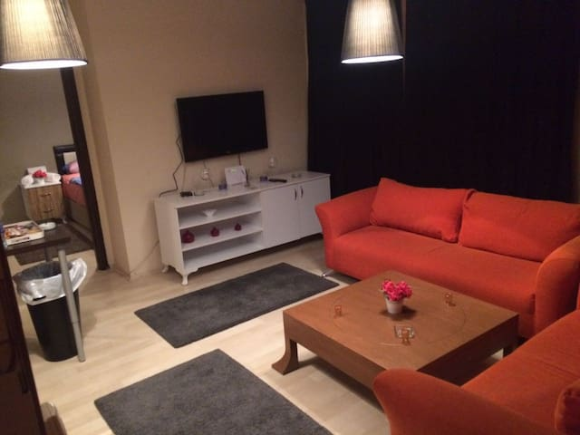 Ankara'daki Eviniz Concept Rental House - Çankaya - Apartment