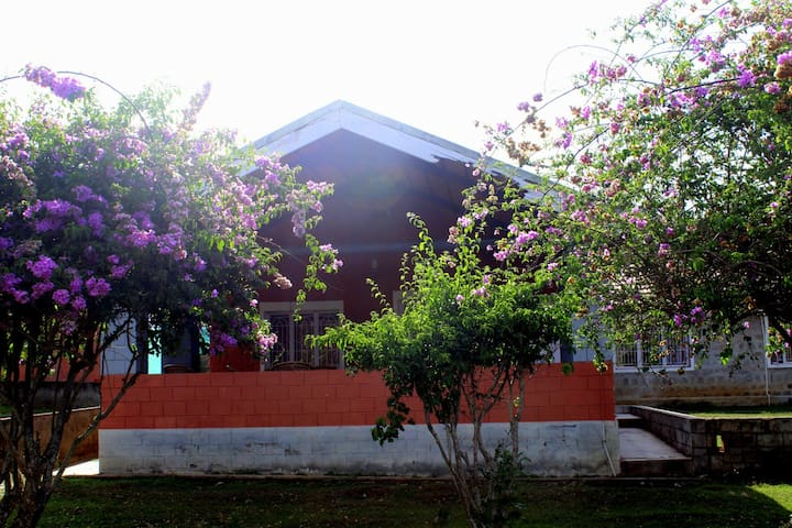 Luxurious bungalow housed in the wilderness - Masinagudi