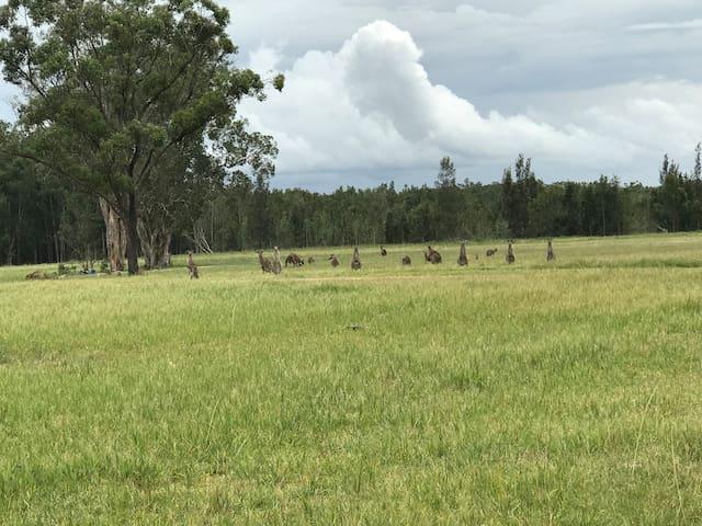 Tranquil Rural Hideaway
