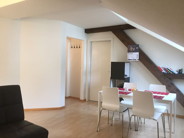 Cozy penthouse appartment in Luzern city center - Luzern - Appartement