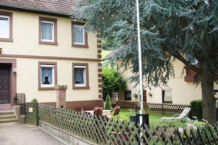 Haus am Neckar EG - Neckargemünd