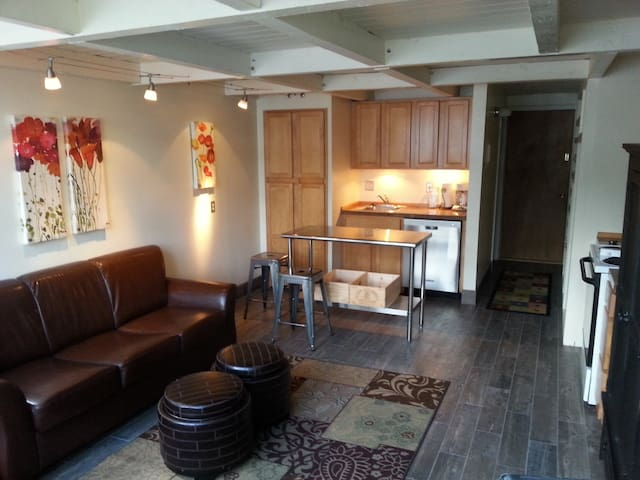 Homestake Condos Contemporary Loft Style Condo
