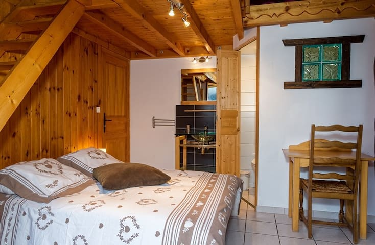 chalet for 18 persons in the center of the village - CHATEL - Rumah