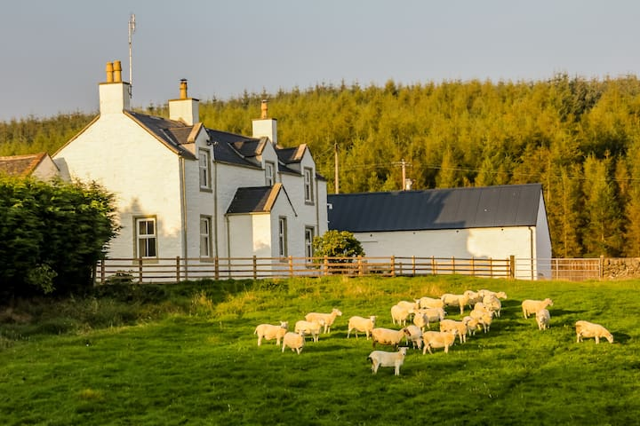 Diamond Laggan  - 5 star cottage - Dumfries and Galloway - Haus