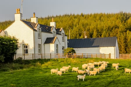 Diamond Laggan  - 5 star cottage - Dumfries and Galloway - Dom