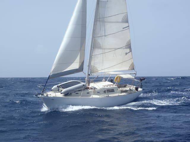 "bateau ""Akemi"" - Portsmouth - Boot"