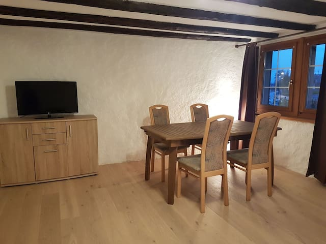 Comfortable 2 1/2 room / 60m2 appartment - Horgen - Apartment