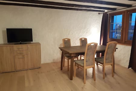 Comfortable 2 1/2 room / 60m2 appartment - Horgen - อพาร์ทเมนท์