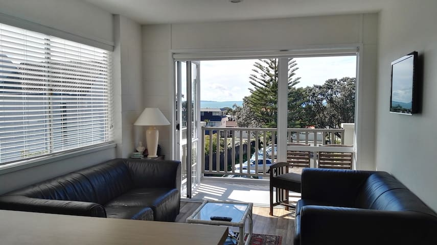 Sunny one bedroom apartment - Auckland - Daire