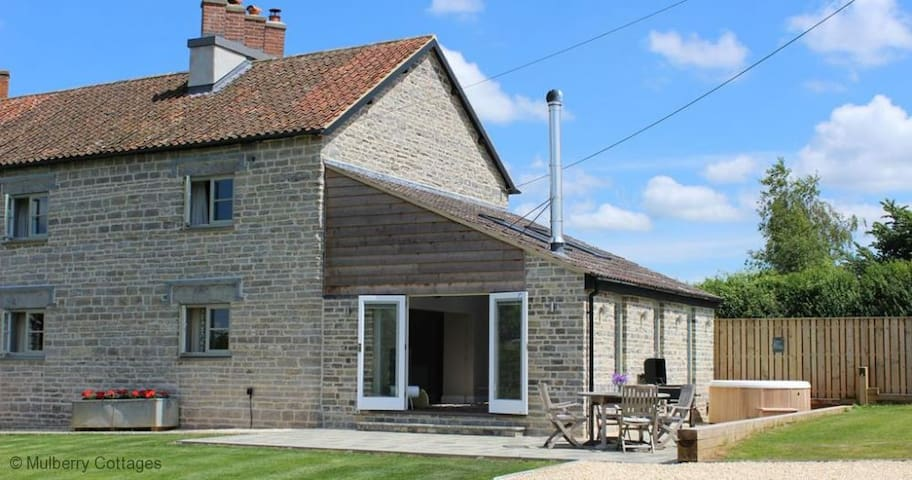 The Orchards, Sleeps 4, semi-detached farm cottage in a very quiet lane within 5 miles of Glastonbury. - Glastonbury