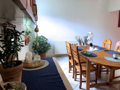 Apartment between airport and city center
