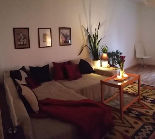 Wohnen in der Schanze - Hamburg - Apartment