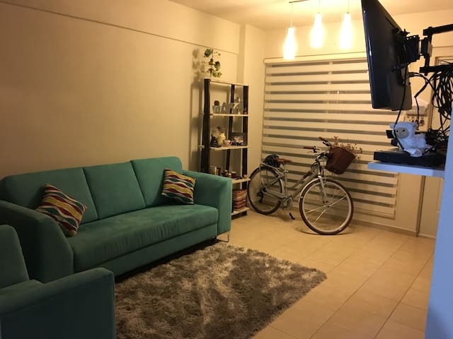 Entire, comfy and modern apartment 10 min Polanco