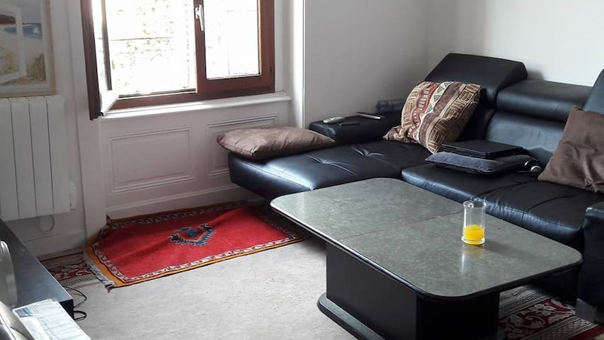 appartement  tranquille et confortable - Rive-de-Gier - Appartement