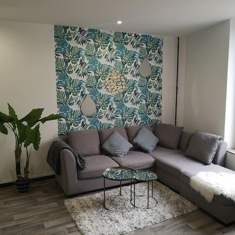 Bel Appartement avec vue sur les péniches de Nancy