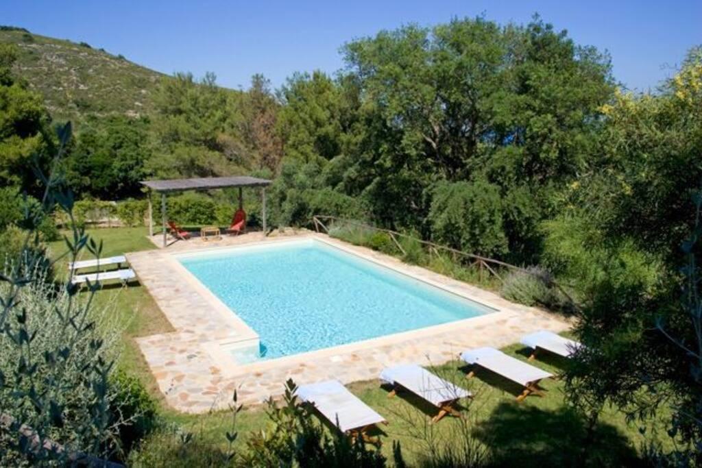 piscina, solarium