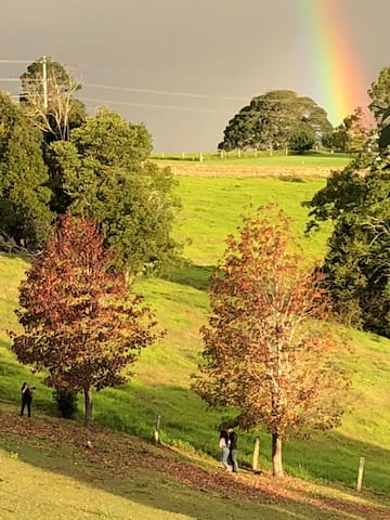 October in Maleny is beautiful