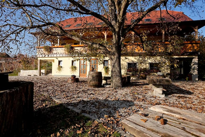 Vineyard cottage Majzelj, room 2 - Šentjernej - 家庭式旅館