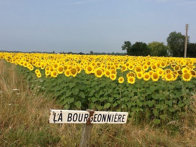 La Bourgeonniere.