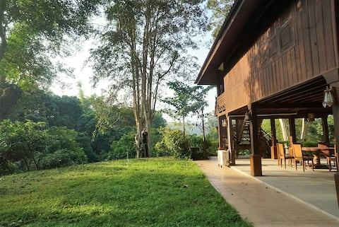 Absolute Thai Hillside Villa(2 BR)