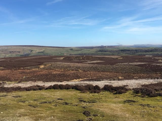 the stunning Grinton Moor which you can see from the cottage