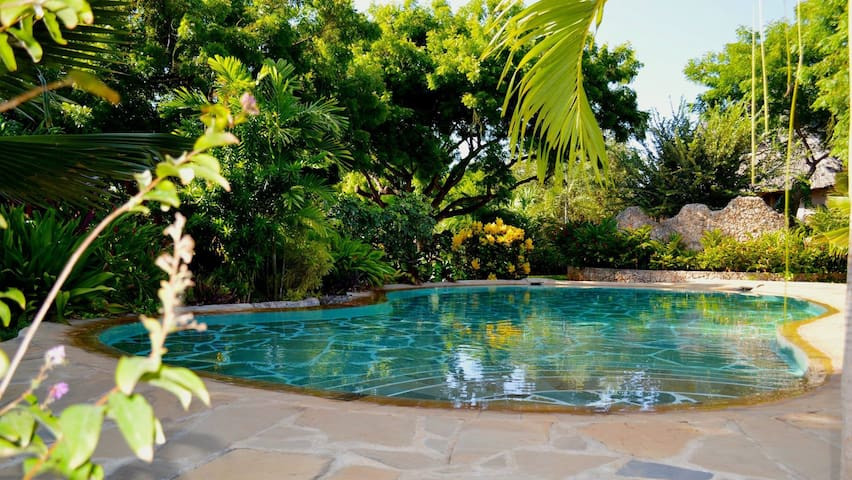 Tiwani Cottages, a secret oasis. - Tiwi