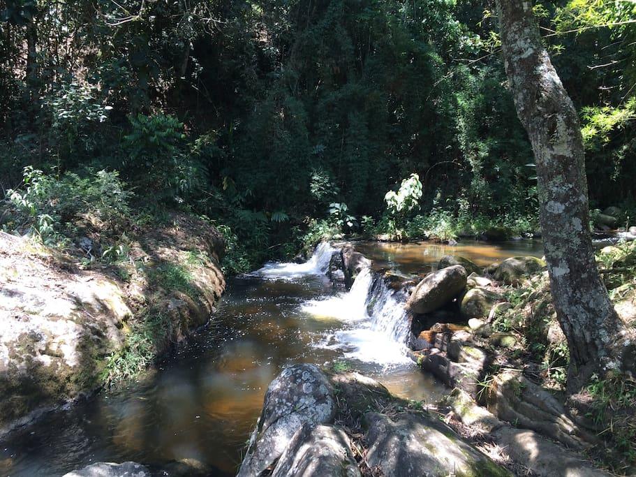 Contemple, reenergize-se, viva a natureza
