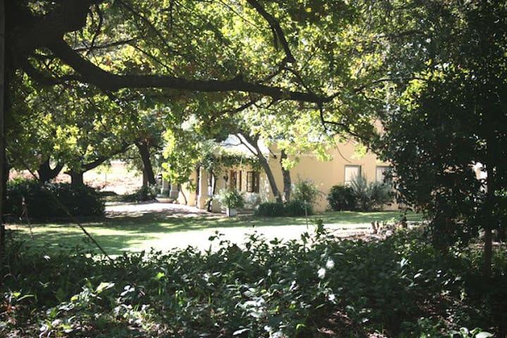Erzette Farm house - Rawsonville - House