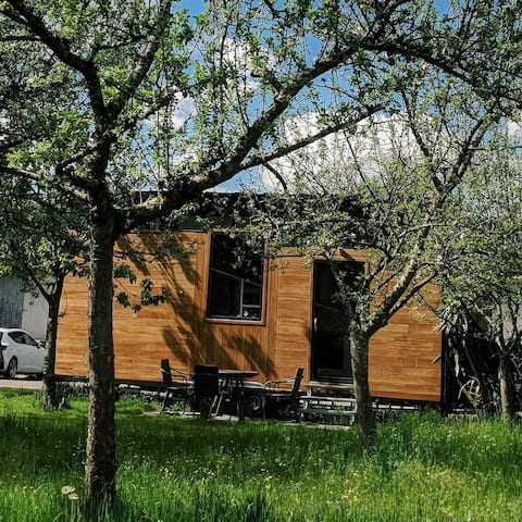 Tiny House OLGA in the shadow of the cherry tree