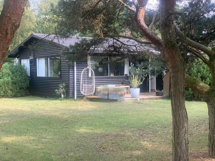 Smagfuldt sommerhus  Holiday cottage