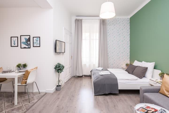 Ultra central cozy Studio on Váci street