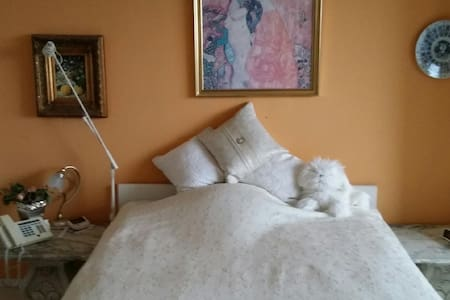 Central room  close to Tivoli :  ONLY WOMEN - Frederiksberg - Appartamento