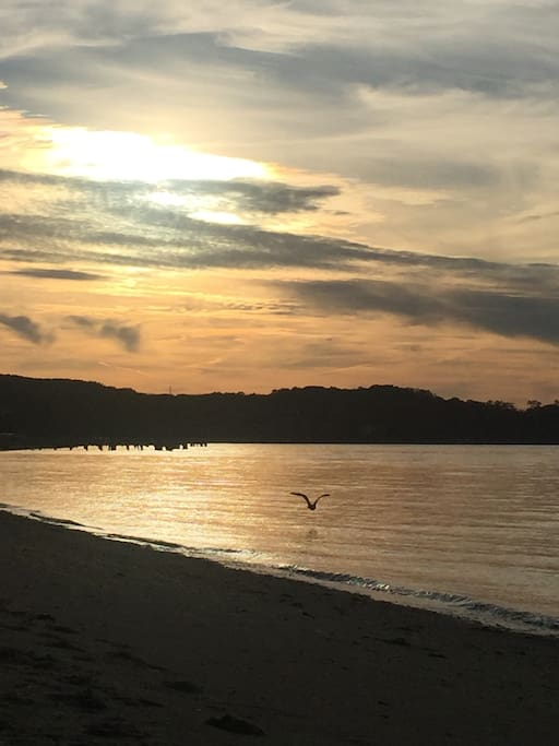 Beautiful sunsets and birds at Crescent Beach These beautiful views can be seen from the Perlman the Pridwin and Sunset Beach restaurant