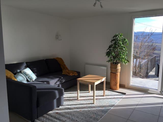 Le salon très lumineux, donnant sur la terrasse plein sud.