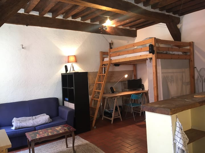 Appartement Dijon centre
