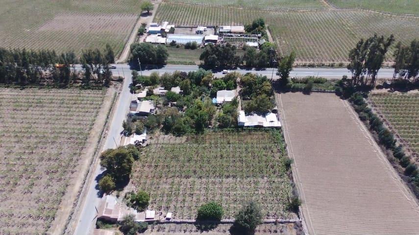 Casa Campo El Tambo  Vicuña Valle Elqui klm 56.