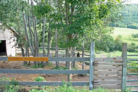Horses! The Guest House at Rosemary Farm Sanctuary - South Kortright - House