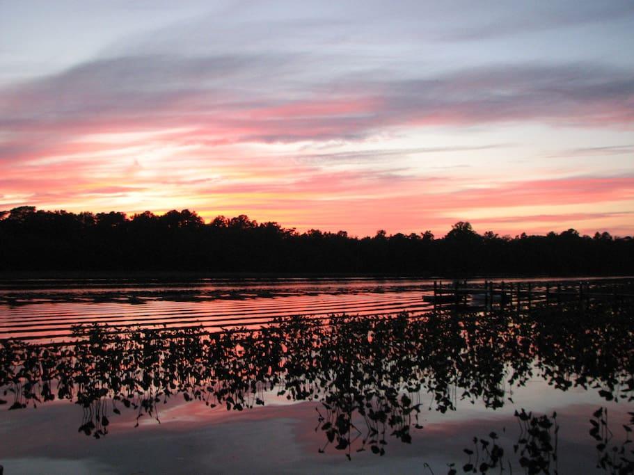 Beautiful waterfront sunsets