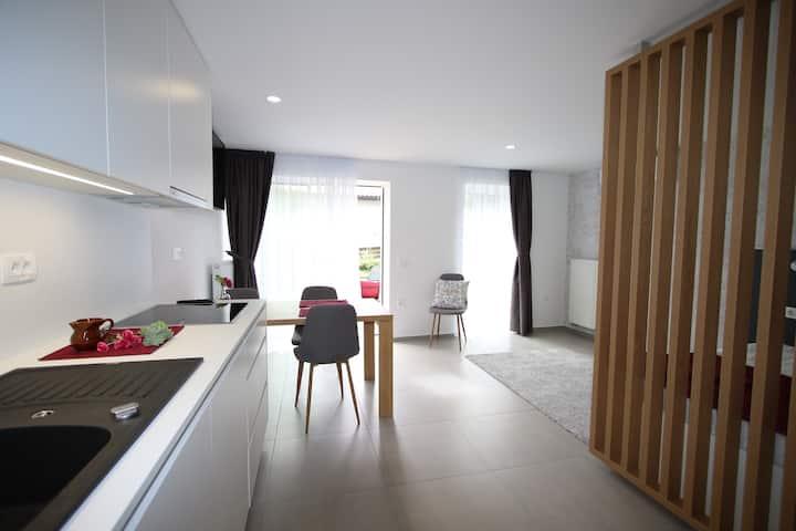 Gallus apartma Ljubljana - Karlin